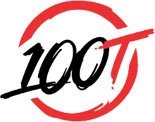 100thieves logo