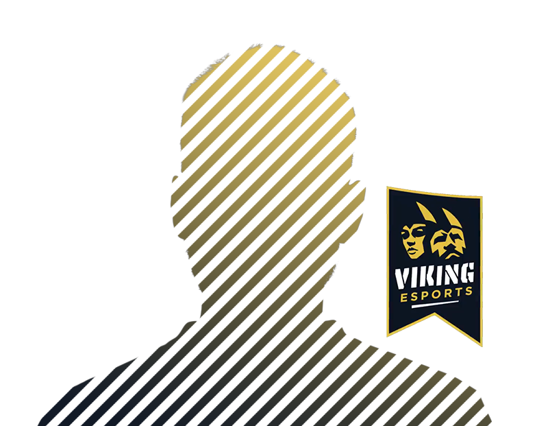 Viking Player